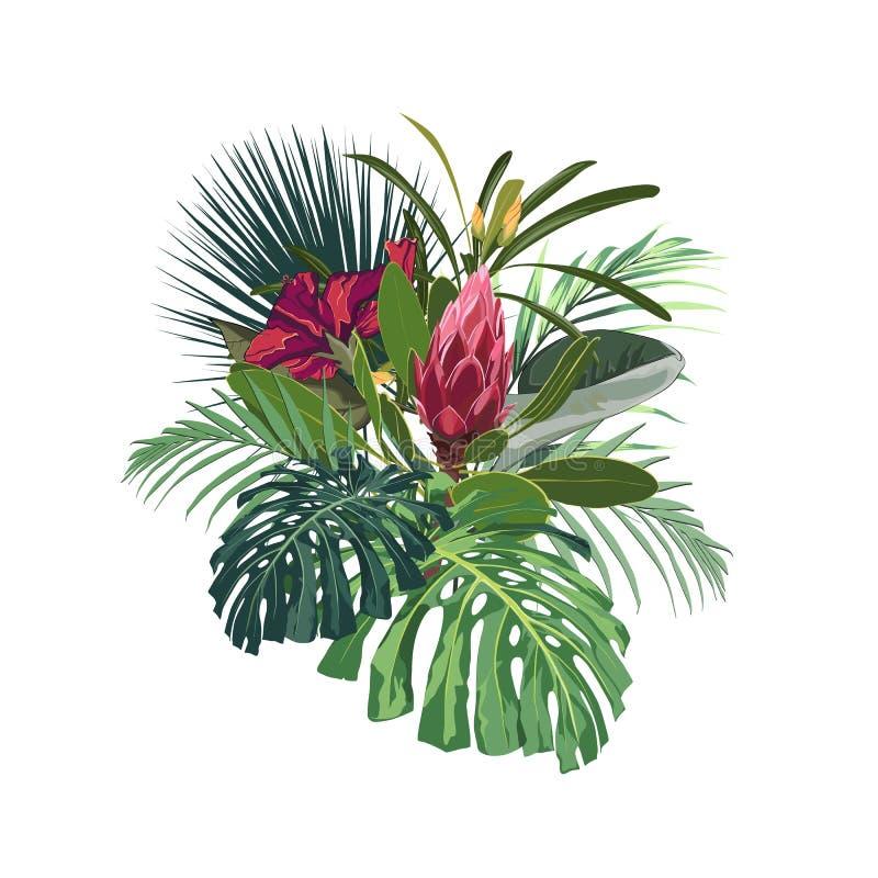 Τροπικά λουλούδια, φύλλα monstera φοινικών, hibiscus και λουλούδι protea διανυσματική απεικόνιση
