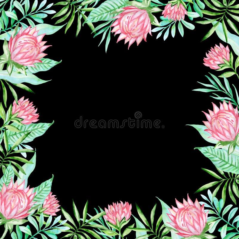 Τροπικά λουλούδια Watercolor σε ένα μαύρο υπόβαθρο διανυσματική απεικόνιση
