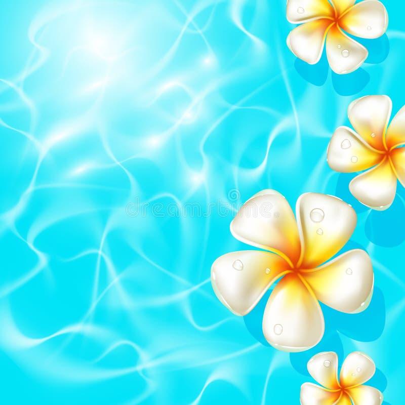 Τροπικά λουλούδια που επιπλέουν στο σαφές μπλε νερό ελεύθερη απεικόνιση δικαιώματος