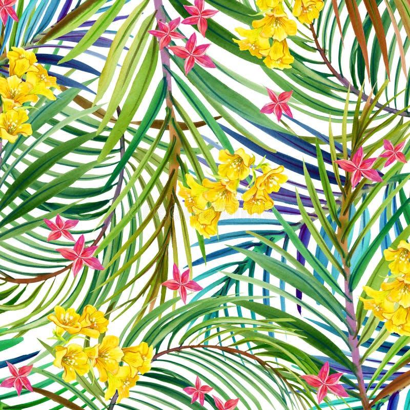 Τροπικά λουλούδια, φύλλα η διακοσμητική εικόνα απεικόνισης πετάγματος ραμφών το κομμάτι εγγράφου της καταπίνει το watercolor απεικόνιση αποθεμάτων