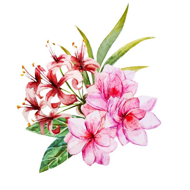 Τροπικά λουλούδια watercolor απεικόνιση αποθεμάτων