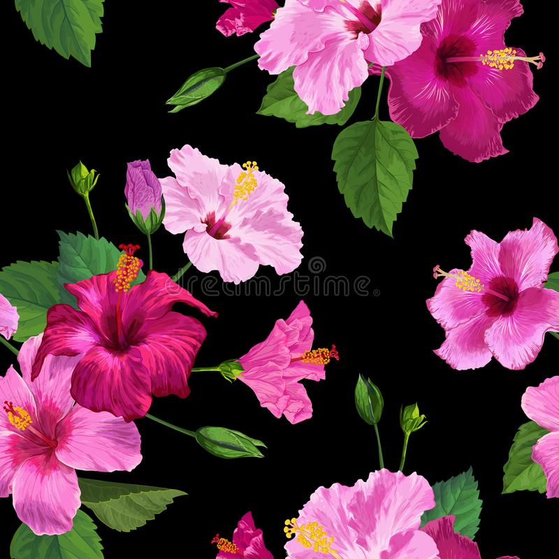 Τροπικά ρόδινα Hibiscus ανθίζουν το άνευ ραφής σχέδιο Floral θερινό υπόβαθρο για το κλωστοϋφαντουργικό προϊόν υφάσματος, ταπετσαρ ελεύθερη απεικόνιση δικαιώματος