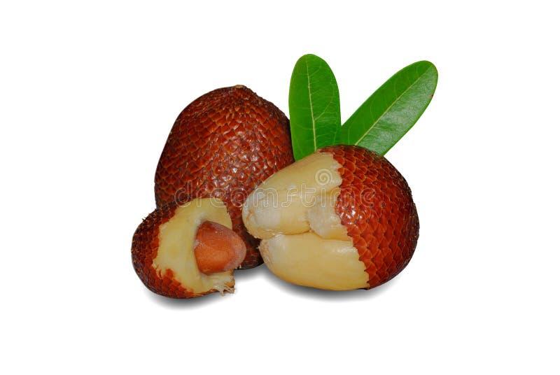 Τροπικά φρούτα, ή ακανθώδης φοίνικας στο άσπρο υπόβαθρο στοκ εικόνα με δικαίωμα ελεύθερης χρήσης