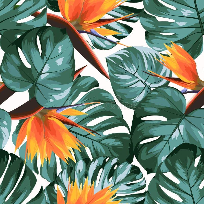 Τροπικά φύλλα δέντρων τροπικών δασών ζουγκλών monstera πρασινάδων philodendron Φωτεινά πορτοκαλιά λουλούδια πουλιών strelitzia το διανυσματική απεικόνιση