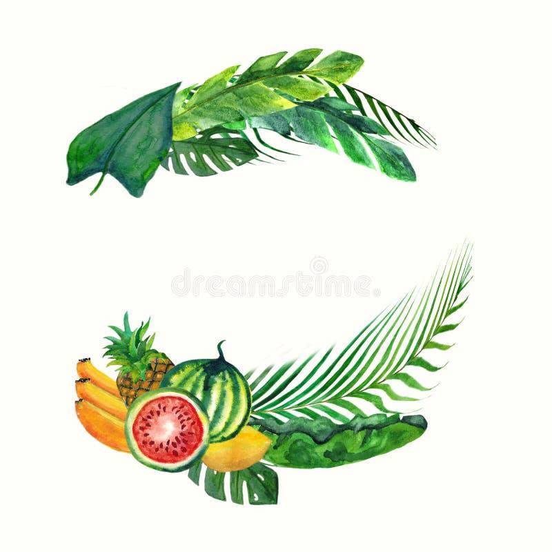 Τροπικά φύλλα και φρούτα στεφανιών Watercolor που απομονώνονται στο άσπρο υπόβαθρο Απεικόνιση για τις γαμήλιες προσκλήσεις σχεδίο ελεύθερη απεικόνιση δικαιώματος