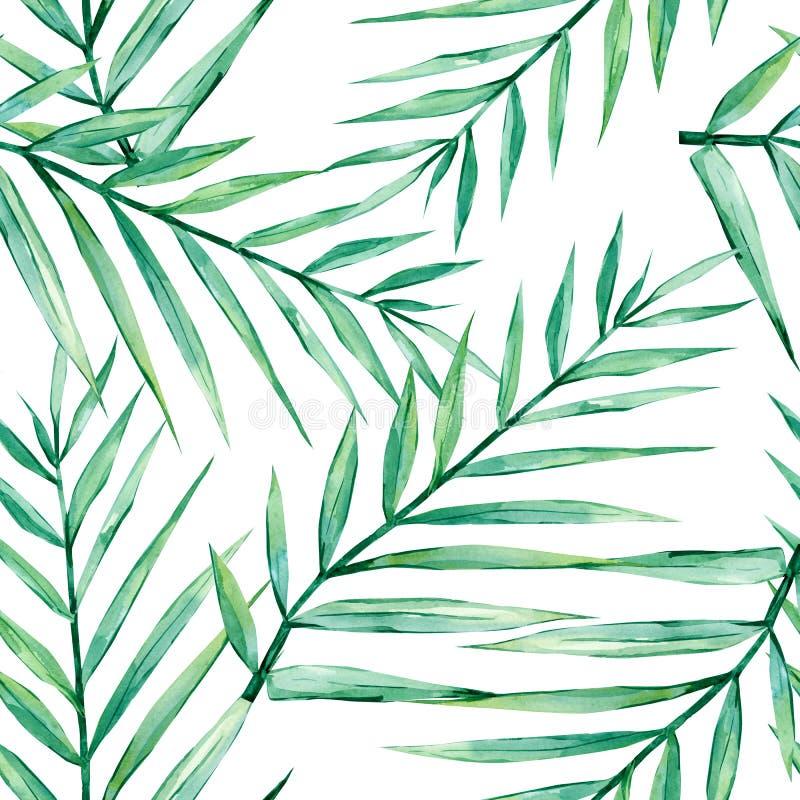 Τροπικά φύλλα σχεδίων θερινού watercolor άνευ ραφής Κλάδοι φοινικών απεικόνιση αποθεμάτων