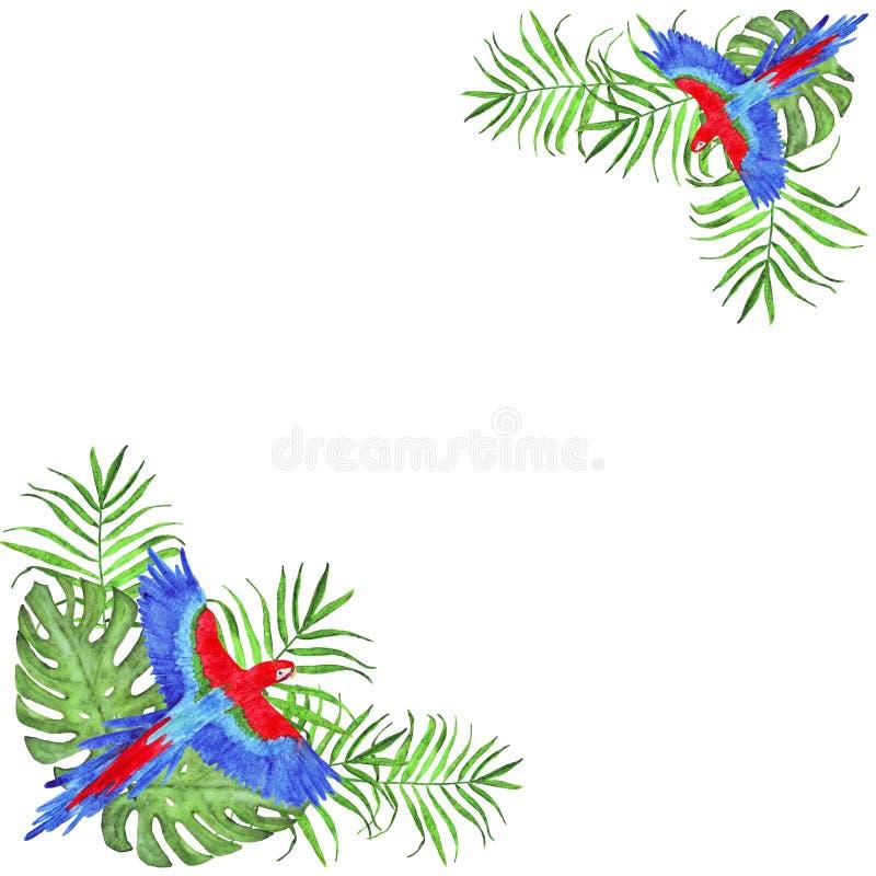 Τροπικά φύλλα φοινικών παπαγάλων πλαισίων Watercolor macaw και πουλί monstera ελεύθερη απεικόνιση δικαιώματος