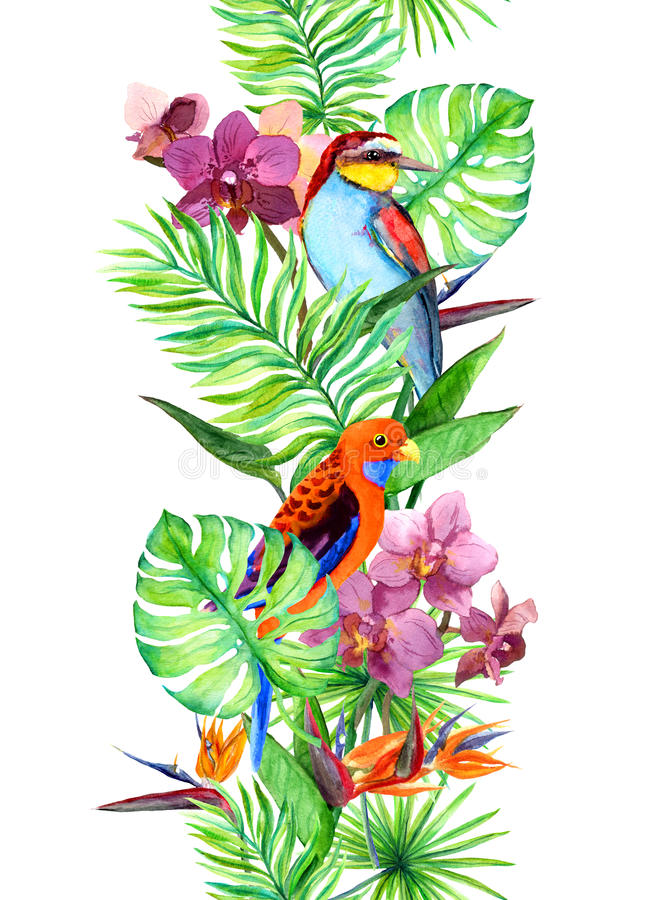 Τροπικά φύλλα, εξωτικό πουλί παπαγάλων, λουλούδια ορχιδεών σύνορα άνευ ραφής Λωρίδα Watercolor διανυσματική απεικόνιση