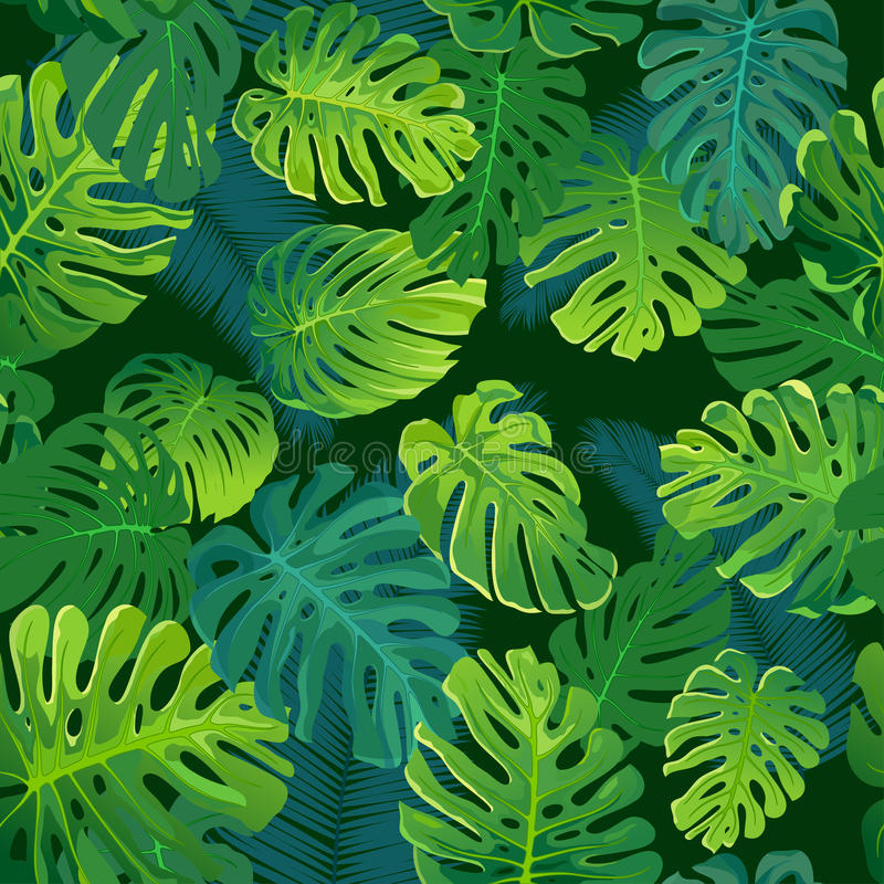 Τροπικά φύλλα φοινικών και monstera, άνευ ραφής διανυσματικό floral υπόβαθρο σχεδίων φύλλων ζουγκλών διανυσματική απεικόνιση