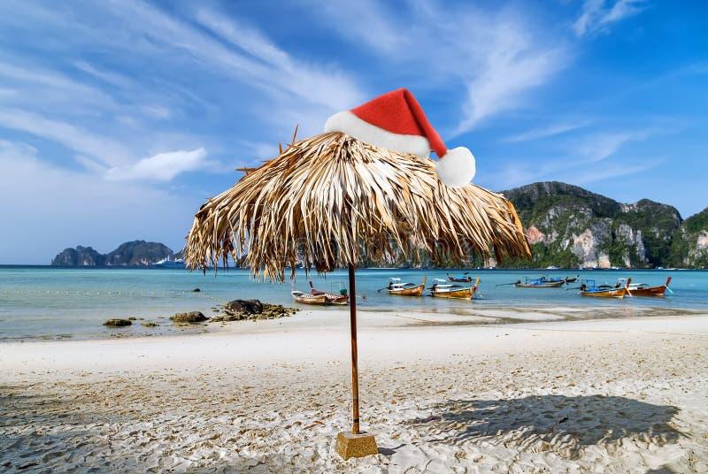 Τροπικά Χριστούγεννα παραλιών στοκ εικόνα