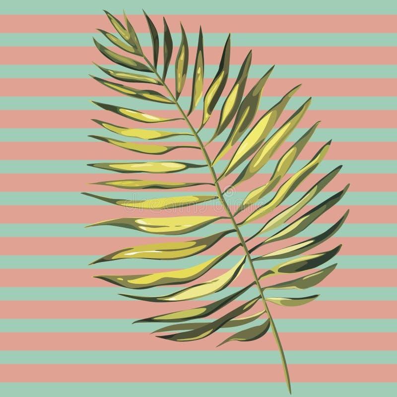 Τροπικές απεικονίσεις φύλλων φοινικών Φύλλα ζουγκλών που απομονώνονται στο άσπρο υπόβαθρο ελεύθερη απεικόνιση δικαιώματος