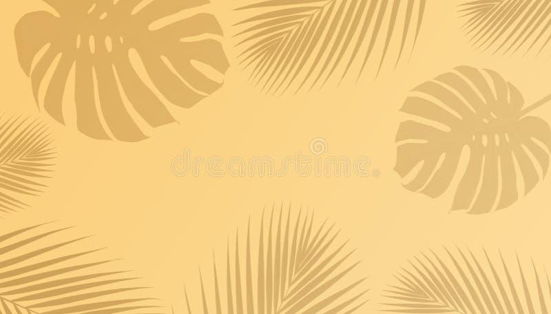 Τροπικές φύλλα φοινικών και σκιά monstera με το διάστημα αντιγράφων απεικόνιση αποθεμάτων