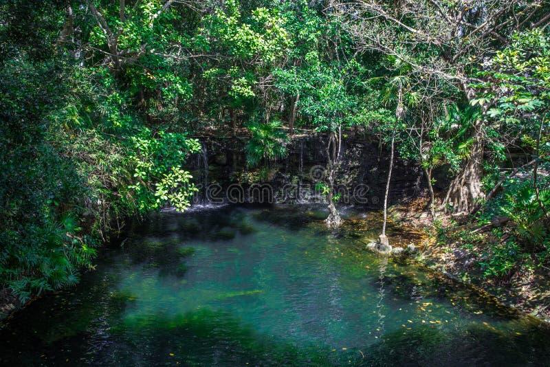 Τροπική εξωτική πράσινη ζούγκλα με μια μπλε λίμνη και καταρράκτης μια ηλιόλουστη ημέρα στοκ φωτογραφία