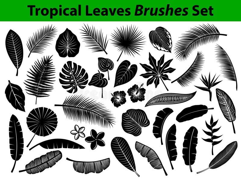 Τροπική εξωτική συλλογή σκιαγραφιών φύλλων με μερικά λουλούδια στο μαύρο χρώμα απεικόνιση αποθεμάτων