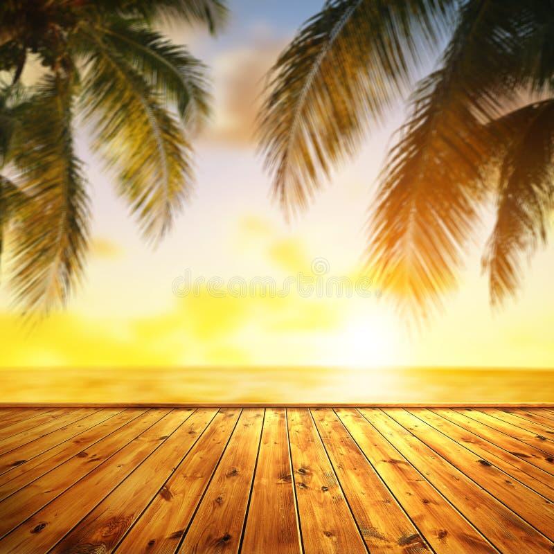 Τροπική θάλασσα και φύλλα φοίνικα κοκοφοίνικα κατά το ηλιοβασίλεμα Στο προσκήνιο ξύλινη προβλήτα στοκ εικόνα