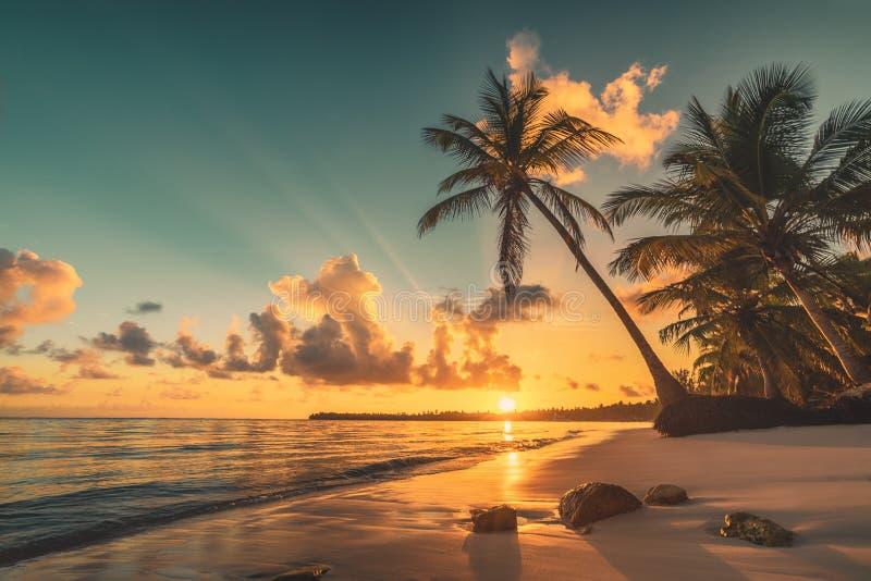 Τροπική παραλία σε Punta Cana, Δομινικανή Δημοκρατία Ανατολή πέρα από το εξωτικό νησί στον ωκεανό στοκ εικόνες