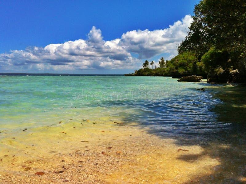 Τροπική παραλία με τη βλάστηση στοκ εικόνα