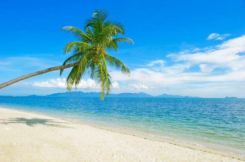 Τροπική παραλία στην Ταϊλάνδη - υπόβαθρο διακοπών στοκ εικόνες