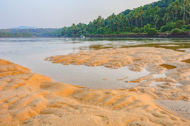 Τροπική παραλία Betul at low tide σε Goa, Ινδία στοκ εικόνα