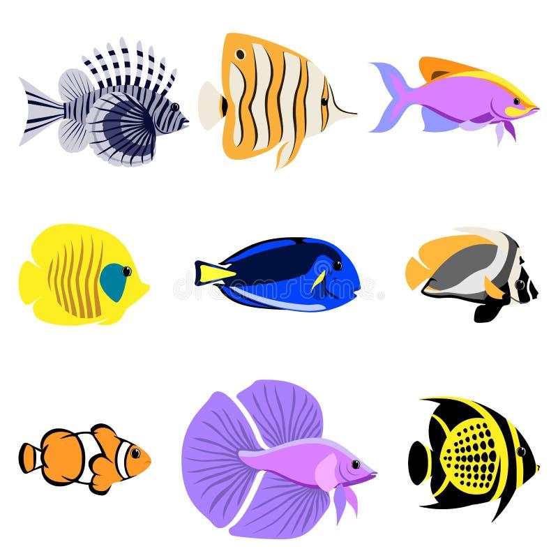 Τροπική συλλογή ψαριών σκοπέλων διανυσματική απεικόνιση