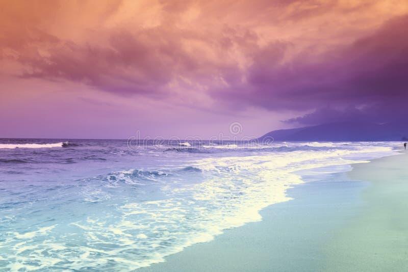 Τροπική ωκεάνια παραλία τοπίων στοκ φωτογραφίες