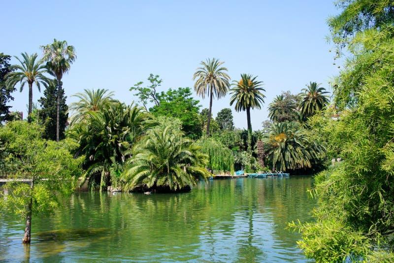 Τροπικοί κήπος, λίμνη και φοίνικες στοκ εικόνες