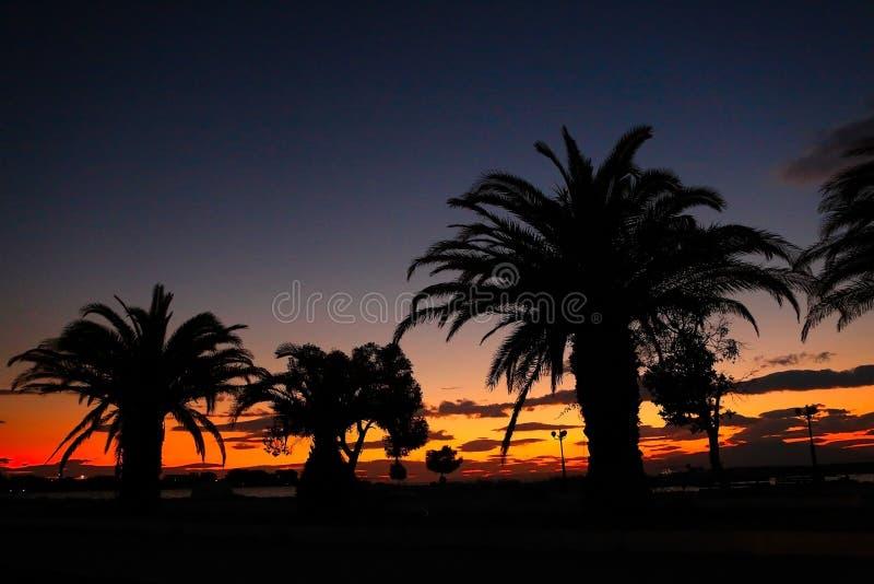 Τροπικοί φοίνικες ηλιοβασιλέματος παραλιών παραδείσου στοκ εικόνες