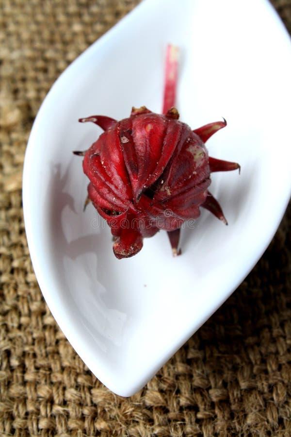 Τροπικός καρπός Rambutan στοκ εικόνες