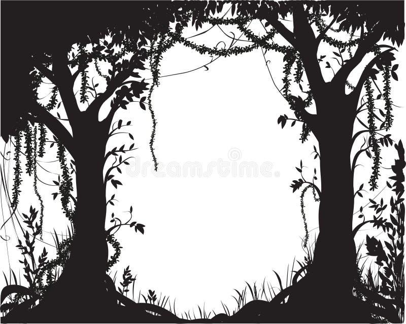 Τροπικός κύκλος δασικών δέντρων στοκ εικόνες με δικαίωμα ελεύθερης χρήσης
