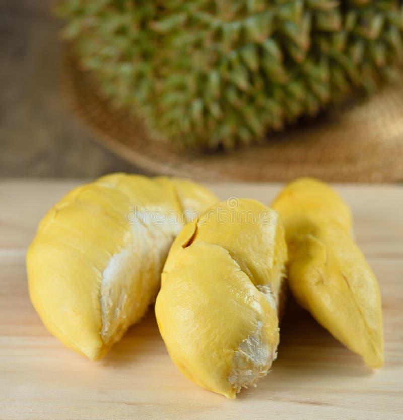 Τροπικός durian βασιλιάς φρούτων των φρούτων στοκ εικόνα με δικαίωμα ελεύθερης χρήσης