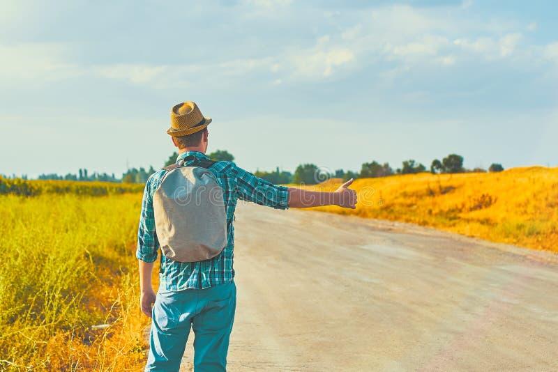 Τροπικός hitchhiker στοκ εικόνα
