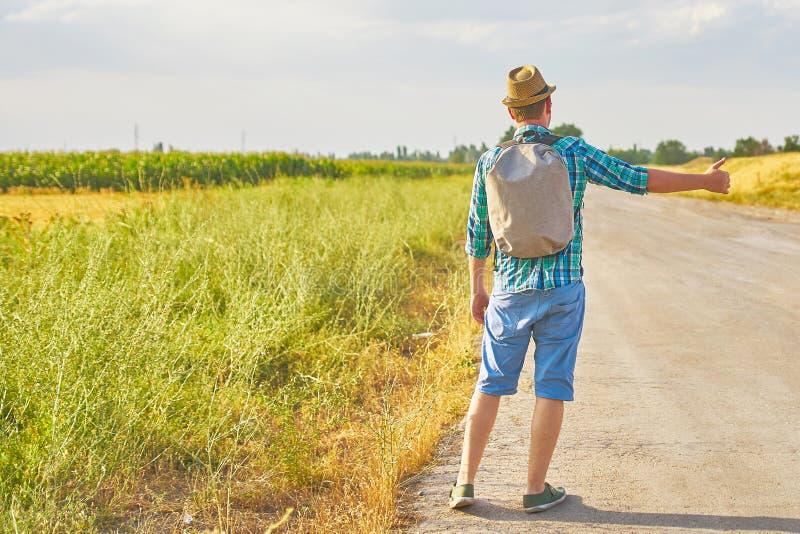Τροπικός hitchhiker στοκ φωτογραφία