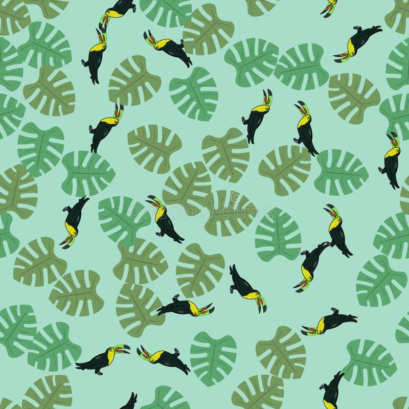Τροπικός toucan άνευ ραφής διανυσματική απεικόνιση