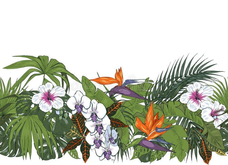 Τροπικό άνευ ραφής σχέδιο λουλουδιών και φύλλων ελεύθερη απεικόνιση δικαιώματος