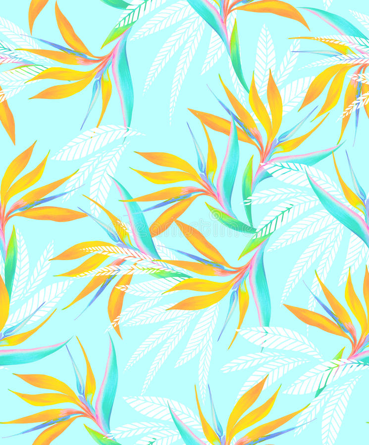 Τροπικό άνευ ραφής σχέδιο πουλιών Watercolor του παραδείσου διανυσματική απεικόνιση