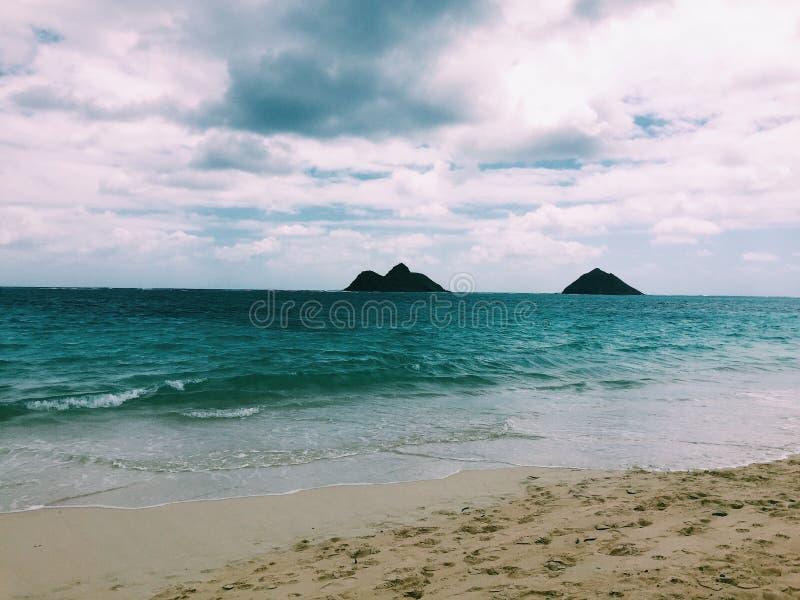 τροπικό διάνυσμα απεικόνισης της Χαβάης παραλιών στοκ εικόνα