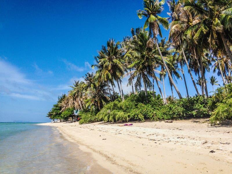 Τροπικό νησί παραδείσου στοκ εικόνες με δικαίωμα ελεύθερης χρήσης