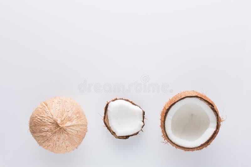 Τροπικό ολόκληρο και μισό αφηρημένο υπόβαθρο φρούτων Καρύδα στο wh στοκ εικόνες