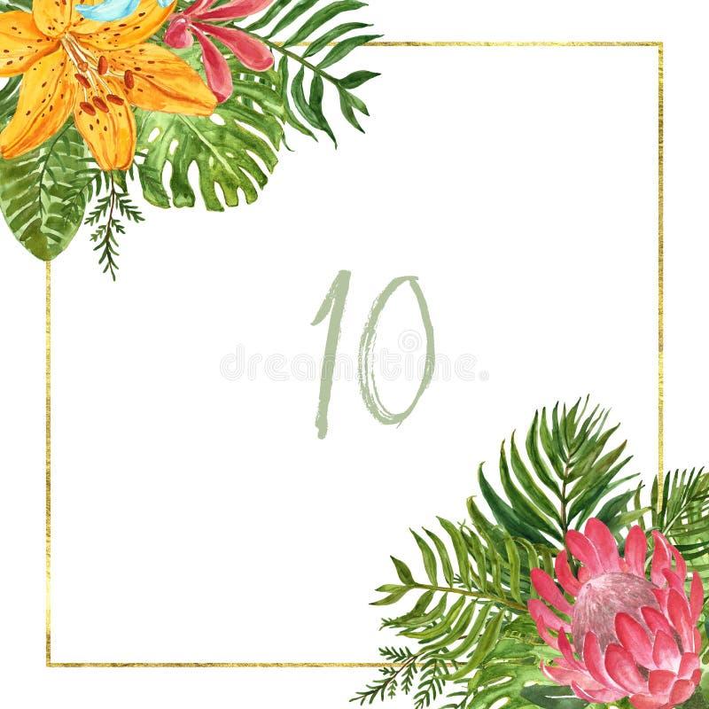 Τροπικό πλαίσιο φύλλων Watercolor Χρυσά τετραγωνικά σύνορα με τις πράσινα εξωτικά εγκαταστάσεις και τα λουλούδια στο άσπρο υπόβαθ διανυσματική απεικόνιση