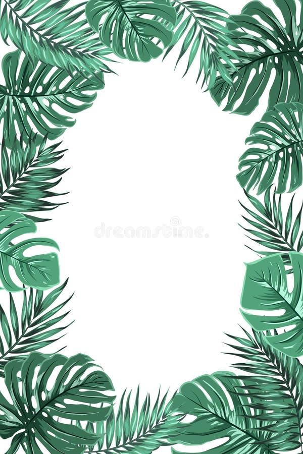 Τροπικό πορτρέτο πλαισίων φύλλων monstera φοινικών ζουγκλών διανυσματική απεικόνιση
