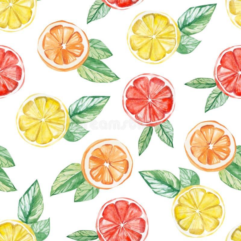 Τροπικό σχέδιο φρούτων Watercolor λεμόνι, πορτοκάλι, τυπωμένη ύλη γκρέιπφρουτ για το υφαντικό ύφασμα, ταπετσαρία, υπόβαθρο αφισών διανυσματική απεικόνιση