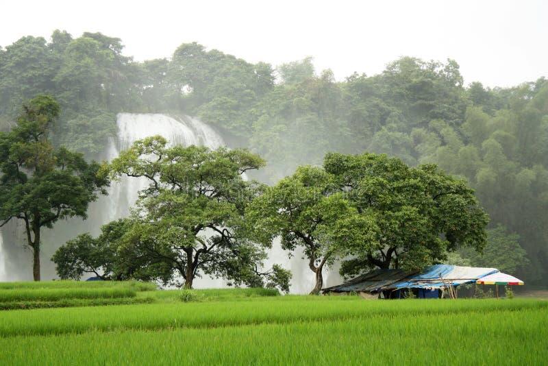 Τροπικό τοπίο με τον καταρράκτη και το σπίτι στοκ φωτογραφία με δικαίωμα ελεύθερης χρήσης