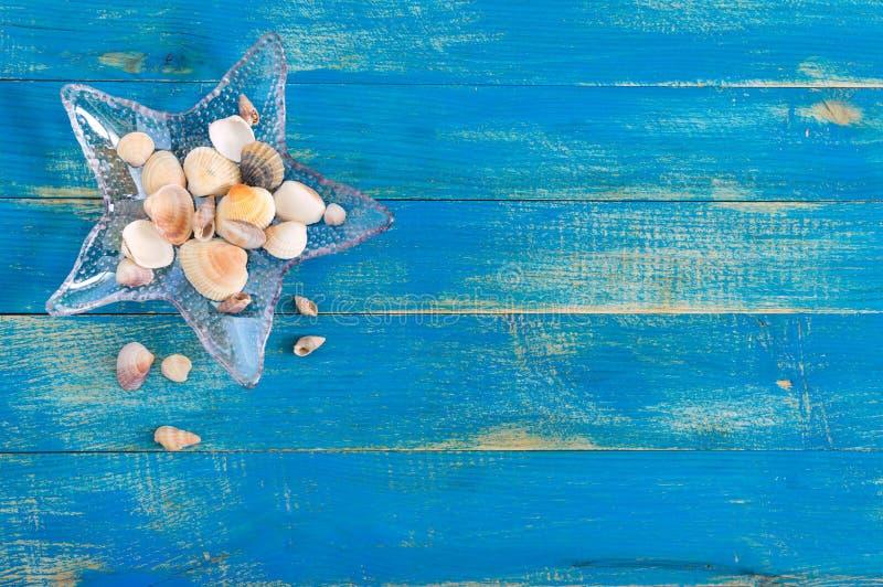 Τροπικό υπόβαθρο θάλασσας Διαφορετικά κοχύλια, σε ένα αστερίας-διαμορφωμένο κύπελλο γυαλιού στους μπλε πίνακες, τοπ άποψη r στοκ φωτογραφία με δικαίωμα ελεύθερης χρήσης