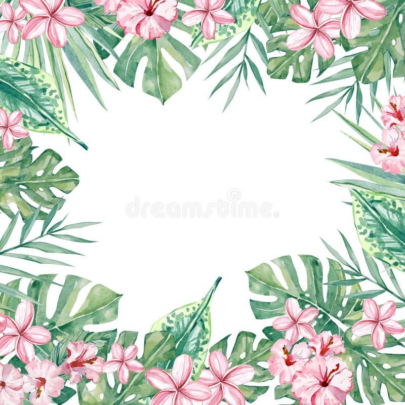 Τροπικό floral πλαίσιο Watercolor Θερινή απεικόνιση για την πρόσκληση, γάμος ελεύθερη απεικόνιση δικαιώματος