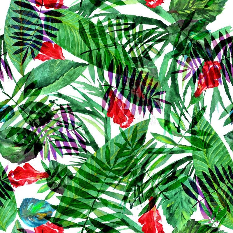 Τροπικό floral σχέδιο σε ένα άσπρο υπόβαθρο Χρωματισμένο Watercolor κολάζ φύλλων καλλιτεχνικό ελεύθερη απεικόνιση δικαιώματος