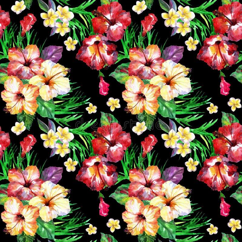 Τροπικό floral σχέδιο στο Μαύρο Χρωματισμένο Watercolor plumeria λουλουδιών απεικόνιση αποθεμάτων