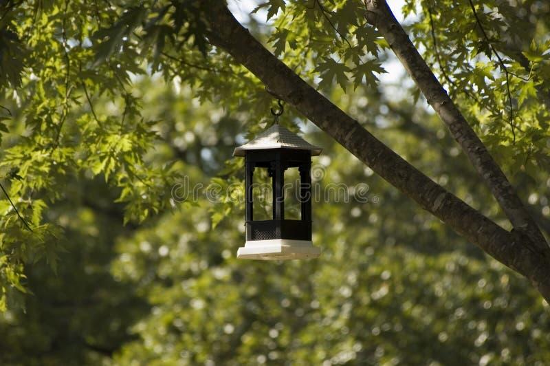 τροφοδότης πουλιών στοκ φωτογραφία με δικαίωμα ελεύθερης χρήσης
