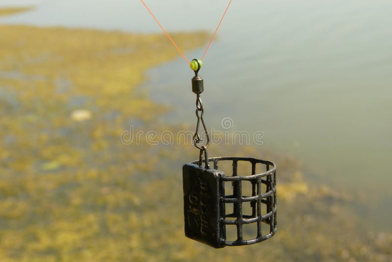 Τροφοδότης κλουβιών στοκ εικόνες με δικαίωμα ελεύθερης χρήσης