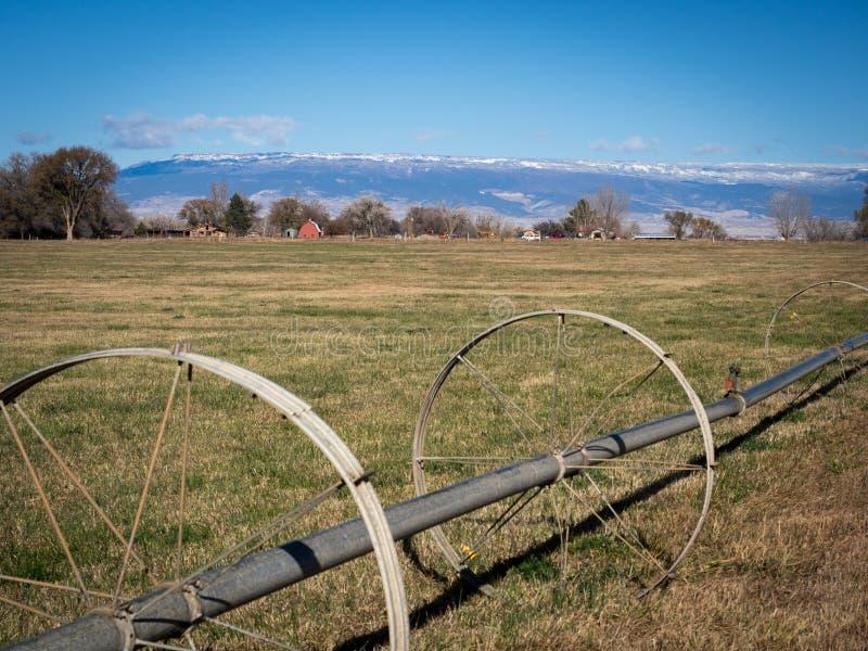 Τροχοφόρος άρδευση στον τομέα στο δυτικό Κολοράντο με τα αγροκτήματα και το s στοκ φωτογραφία με δικαίωμα ελεύθερης χρήσης