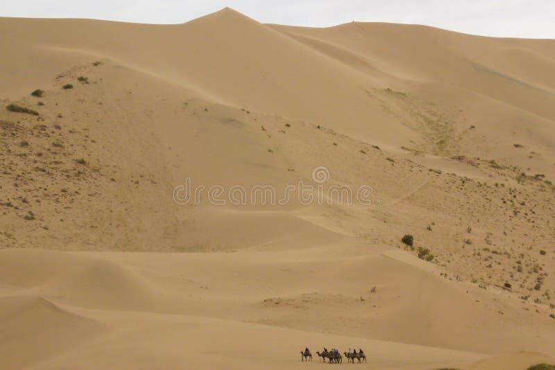 Τροχόσπιτο καμηλών Gobi στην έρημο στοκ εικόνες με δικαίωμα ελεύθερης χρήσης